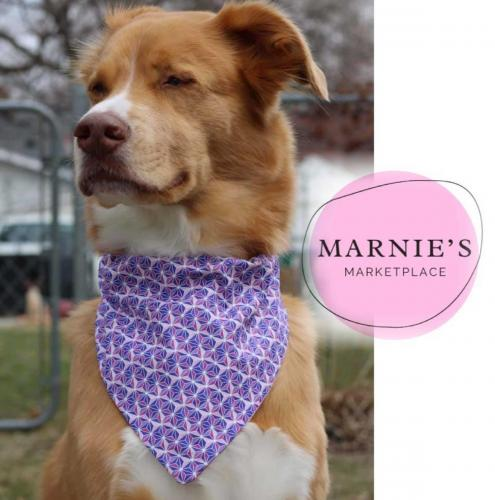 Marnie's Marketplace